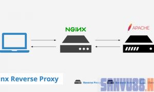 Nginx làm Reverse Proxy cho Apache
