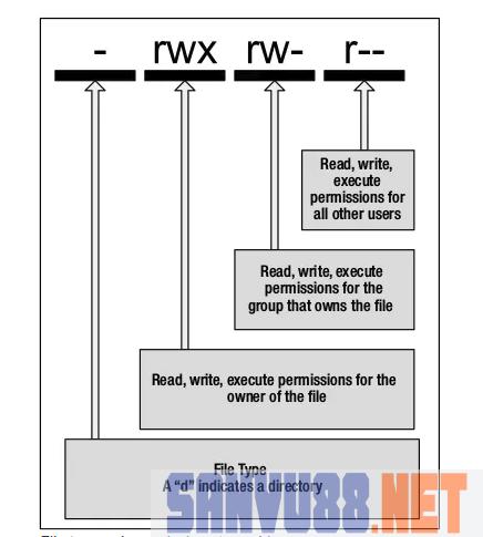 Permissions trong ubuntu
