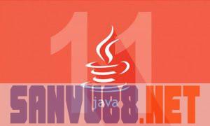 java 11 trên ubuntu 18